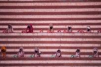 Morning prayers, Varanasi